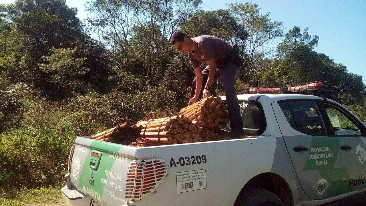 Polícia Militar Ambiental teve trabalho para recolher 1,5 tonelada no meio da mata no Parque Largamar. Foto: Divulgação/Polícia Militar Ambiental
