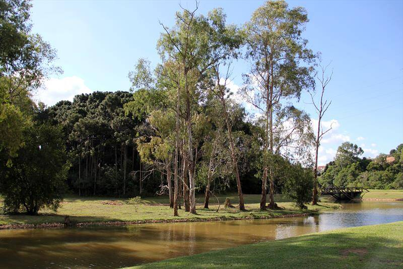Parque Tingui. Foto: Daniel Castellano/SMCS