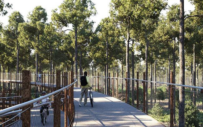 Em Limburgo, ciclistas podem passear pela floresta de Pijnven. Foto: Toerisme Limburg/BYCS