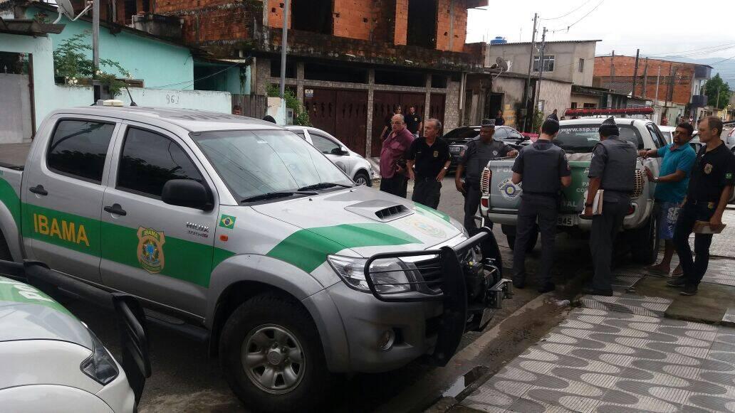 Operação mobilizou ao menos 50 agentes de quatro órgãos diferentes . Foto: Divulgação/Polícia Ambiental