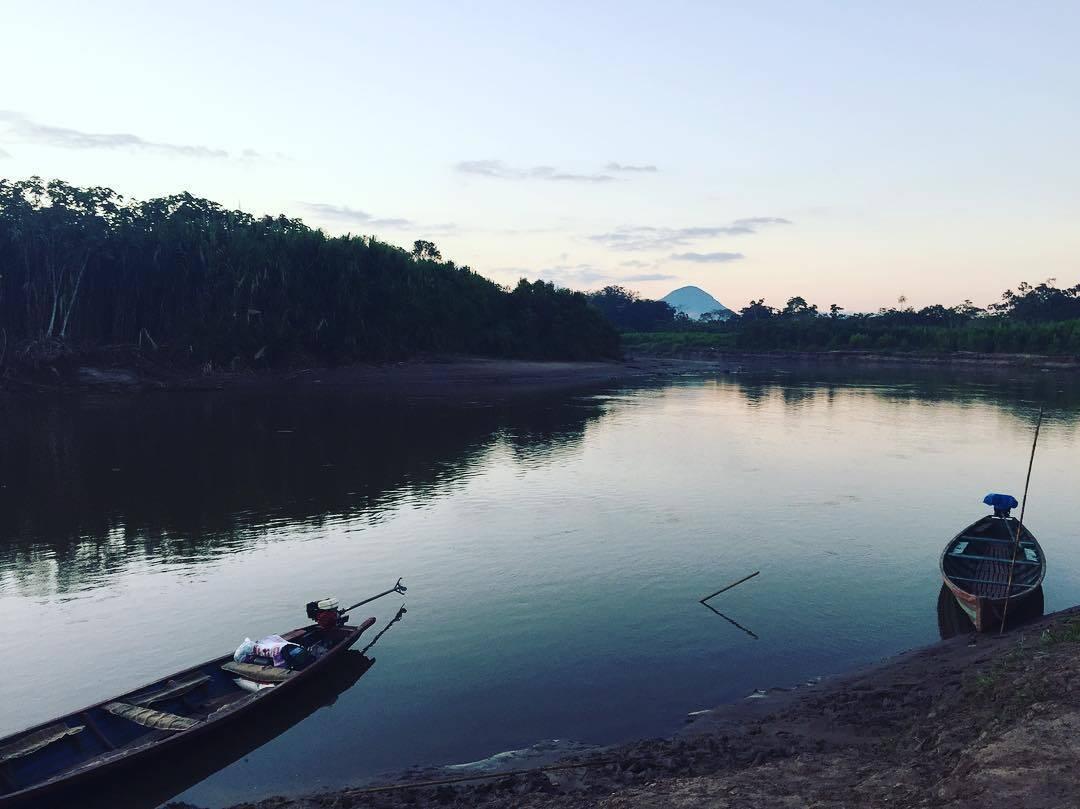 Barcos à beira do rio na floresta amazônica. Foto: Pixabay