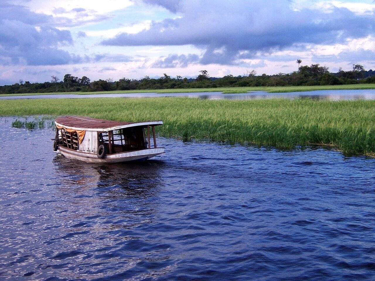 Barco de pescador navega sobre rio na floresta amazônica. Foto: Pixabay