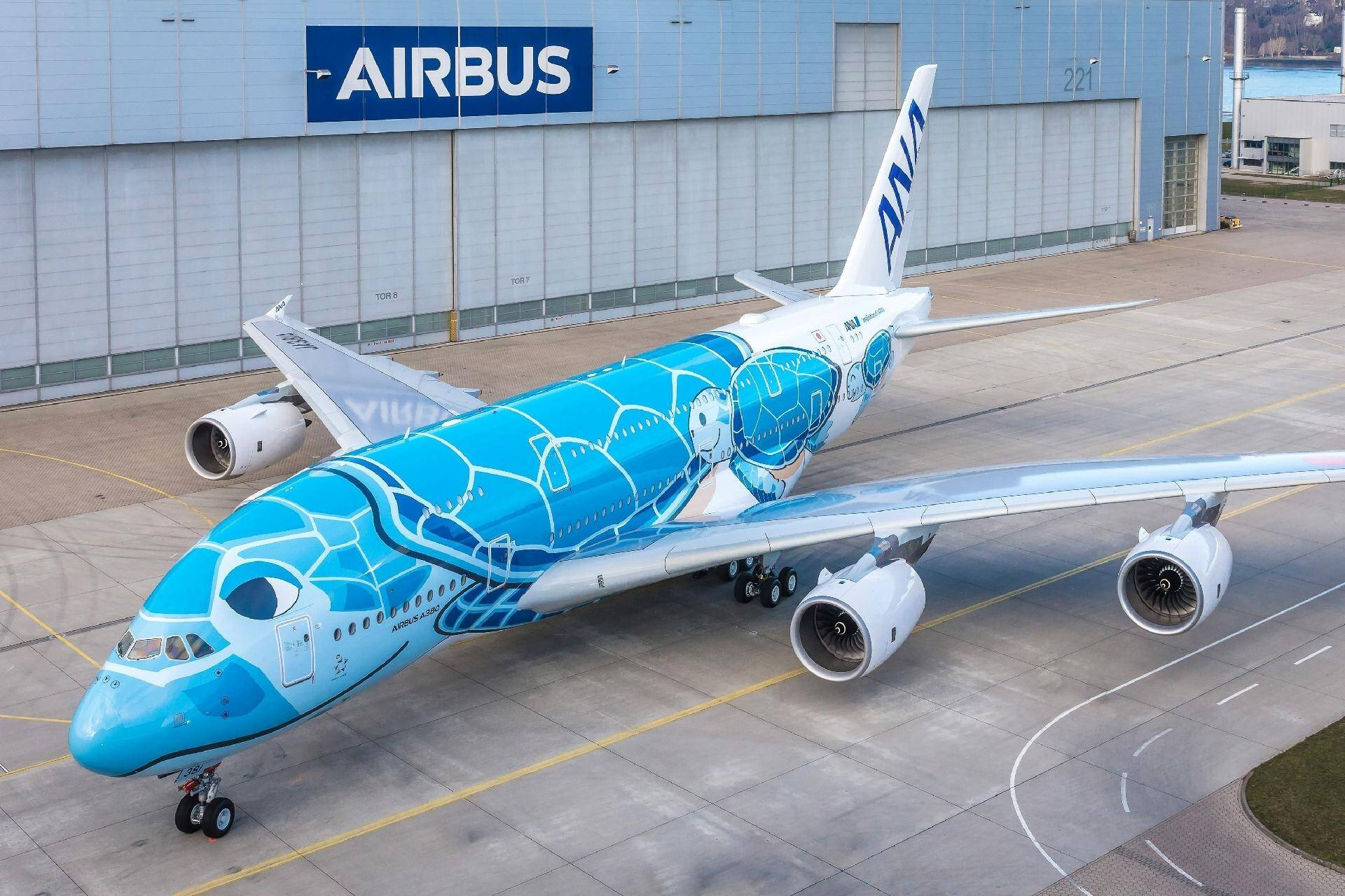 A380 da companhia aérea japonesa ANA (All Nippon Airways), com pintura de tartaruga marinha do Havaí (EUA).. Foto: Divulgação