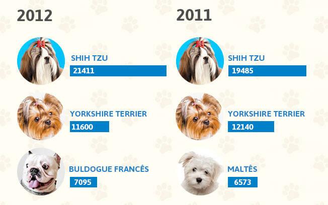 As raças de cachorro mais populares dos anos 2012 e 2011. Foto: Shayene Mazzoti/ Portal IG