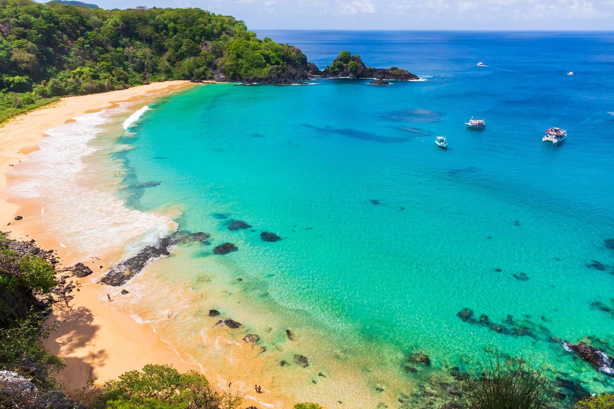 A fauna marinha da Baía do Sancho é bastante extensa e impressiona pela diversidade. Foto: Viagem Turismo