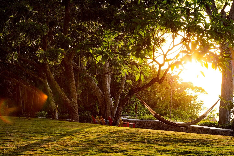 Redes entre árvores . Foto: Airbnb