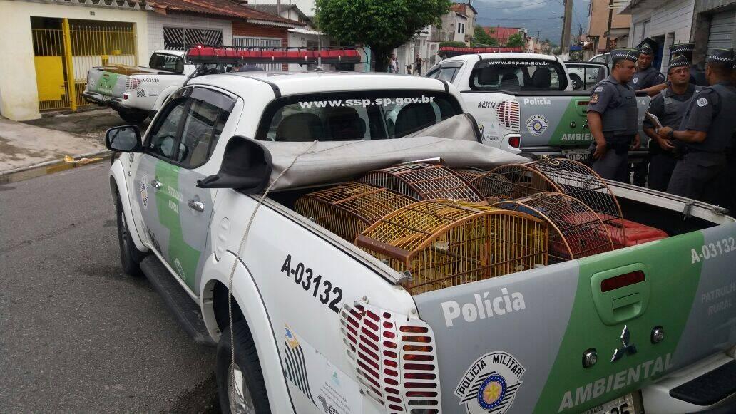 Os detidos foram encaminhados paras as delegacias da PF em Santos e da Polícia Civil, em Praia Grande. Foto: Divulgação/Polícia Ambiental