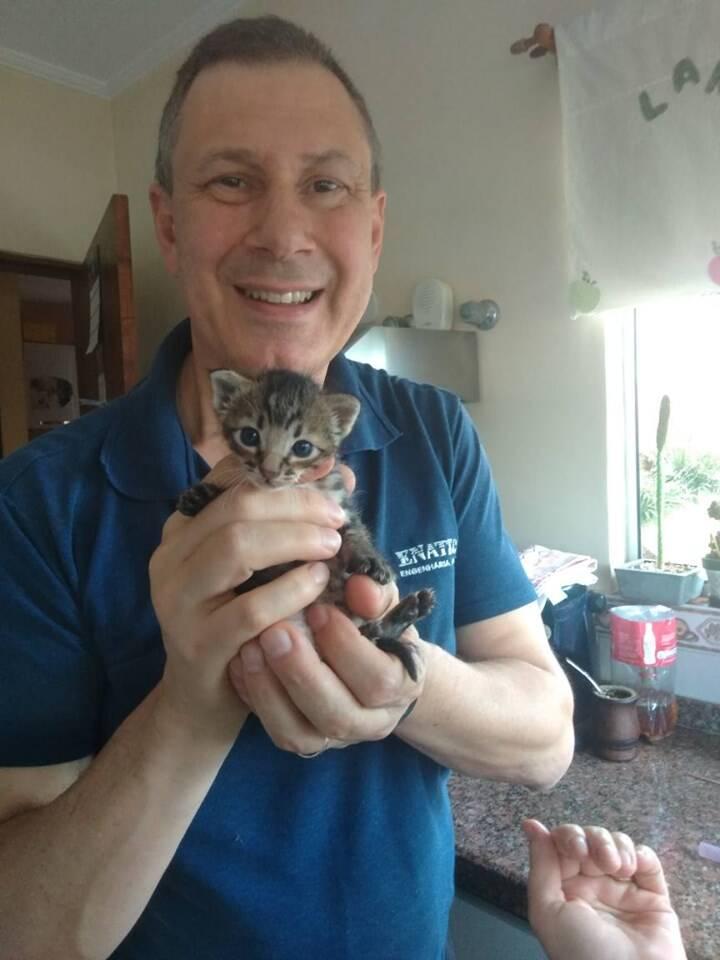 Filhotes de gato e pai de Ingrid. Foto: Facebook/ Ingrid Nielsen