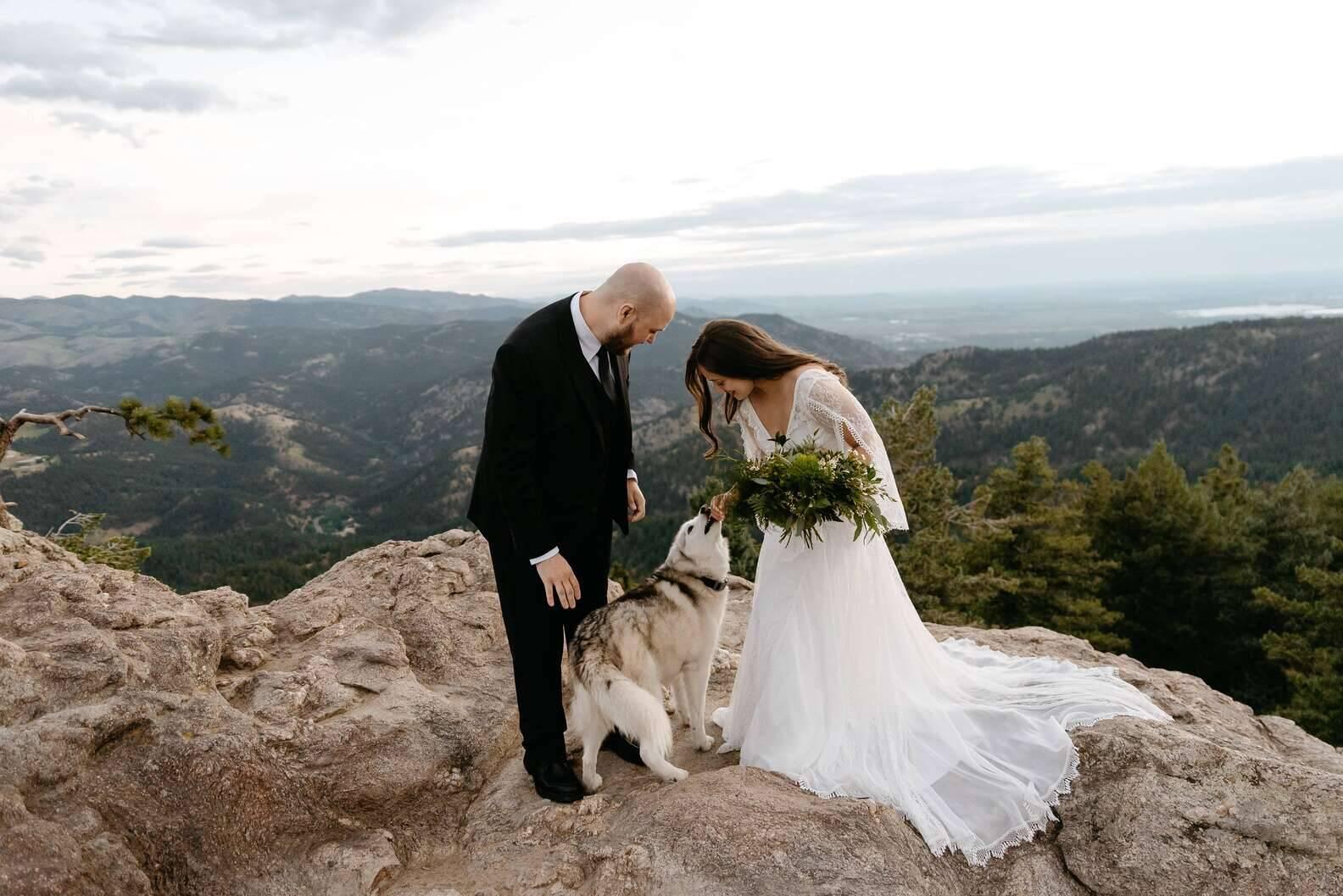 Freya adorou o buque e o vestido da noiva. Foto: Foto de Cara Eliz