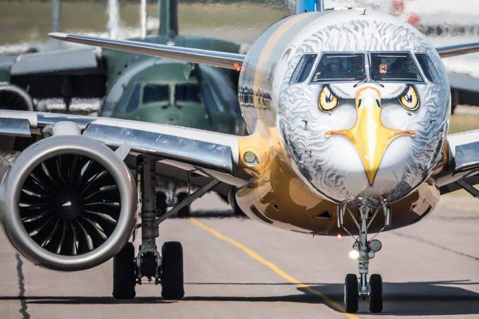 E190-E2, da Embraer, foi primeiro avião a ser pintado como animal pela aérea. Foto: Divulgação