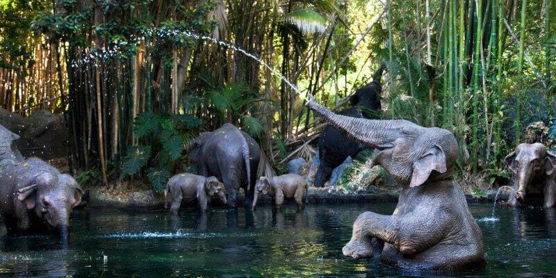 Animais eletrônicos em tamanho real estão espalhados pelos rios da atração. Foto: Reprodução