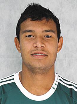 Vinícius Santos Silva