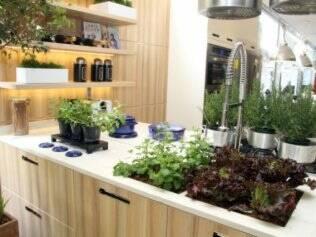 Kitchen Garden, de Marcelo Faisal, que levou a horta para dentro da cozinha