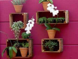 Caixotes de madeira acomodam ervas aromáticas no Refúgio do Casal