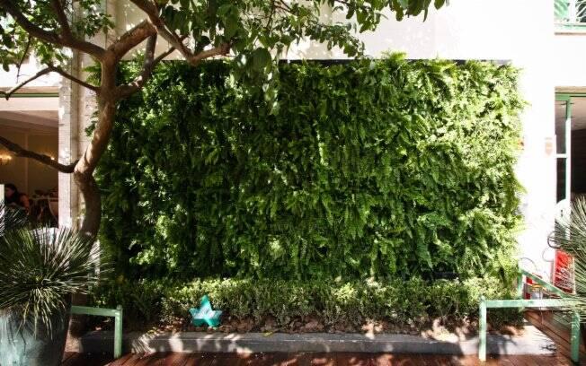 jardim vertical moderno:Jardim vertical após a montagem. Segunda a paisagista, é preciso