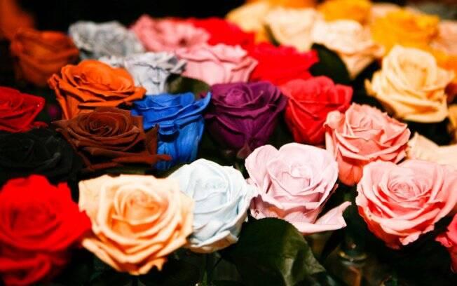Flores ganham cores inusitadas e aparência natural