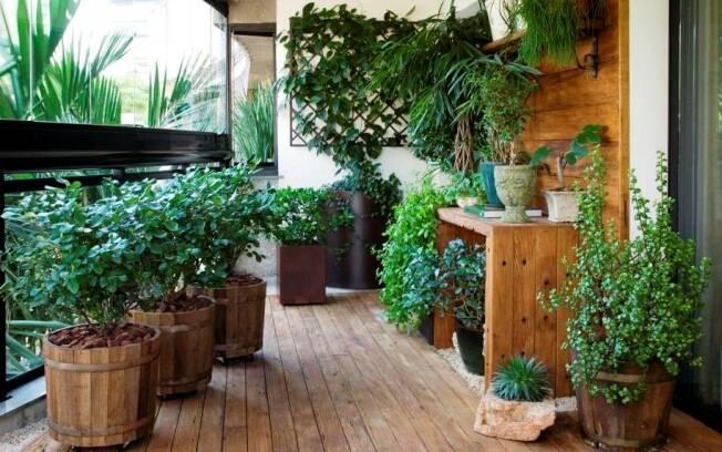 A madeira de demolição é destaque na varanda assinada por Odilon Claro, que misturou diversas espécies, utilizando vasos de diferentes tamanhos