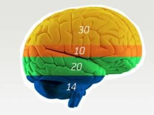 Qual a cor do cérebro do seu filho?