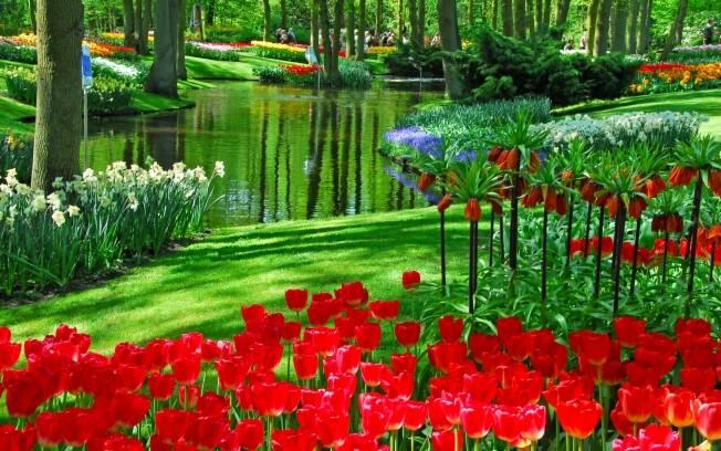 O jardim de Keukenhof , projetado em 1830, é um dos lugares mais visitados da Holanda