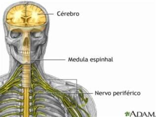 Subindo as pernas neuropatia periférica