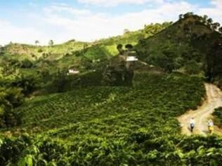 Paisagem cultural de café, Colômbia