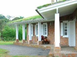 Além de resfriar as casas, o teto verde diminui a poluição do ar e o risco de enchentes