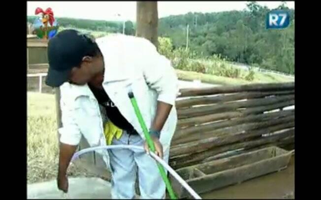 O cantor de axé, que está na equipe Coelho, realiza suas tarefas na fazenda