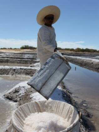 Produção de flor de sal: fina camada que se forma com a evaporação da água do mar