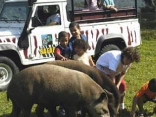 As crianças podem se divertir no safári no resort Portobello