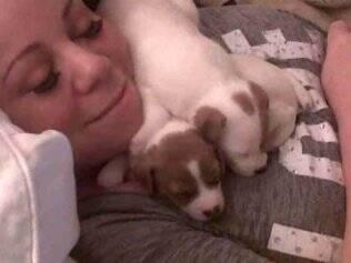 Mariah Carey postou foto dos novos filhotes no Twitter