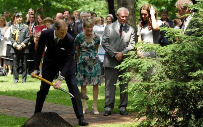 Principe William plantando a árvore Hemlock Oriental