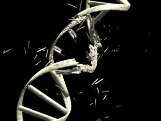 DNA: estilo de vida levado hoje pode afetar gerações futuras