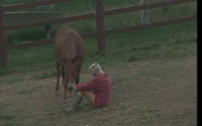 Luiza Gouttschalk faz amizade com o burro