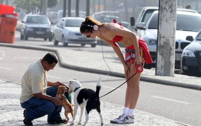 O cachorro de estimação de Ellen parou para confraternizar com outro cãozinho