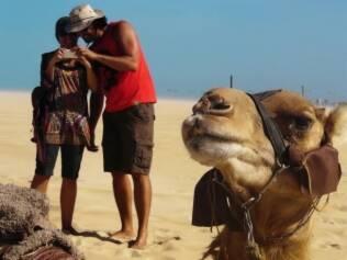 O passeio de dromedário é tradicional nas dunas de Genipabu. Cerca de R$ 35