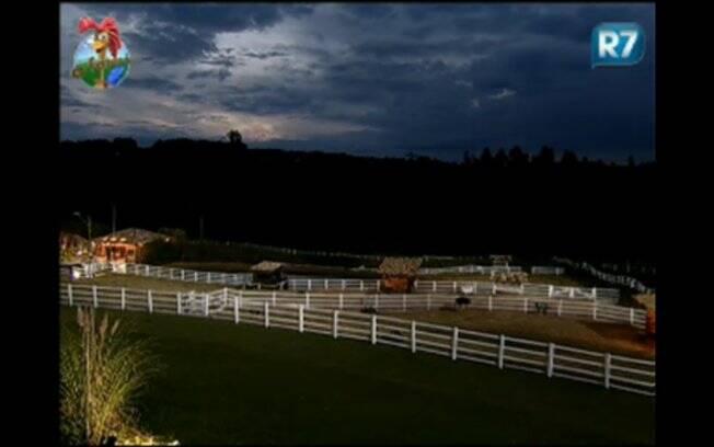 Reality transmite apenas paisagens e animais da fazenda pelo site
